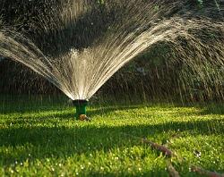Sprinkler watering lawn